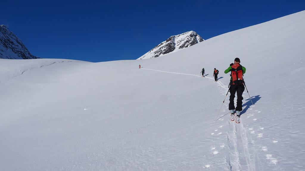 Arnöy Troms skinnausta